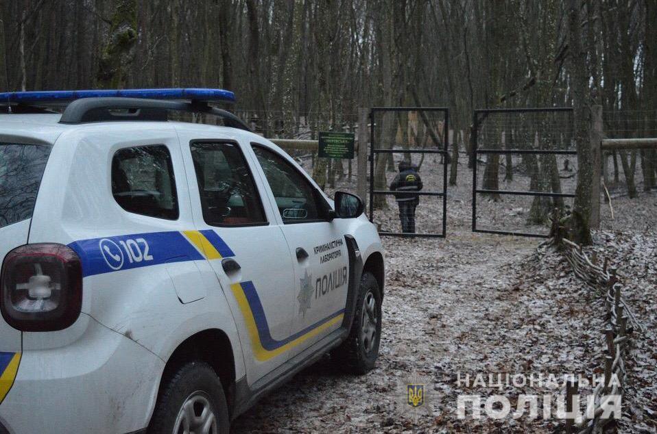 На вбивць ланей на Волині відкрили кримінальне провадження