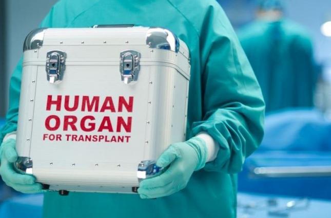 В Україні затвердили вартість трансплантації органів