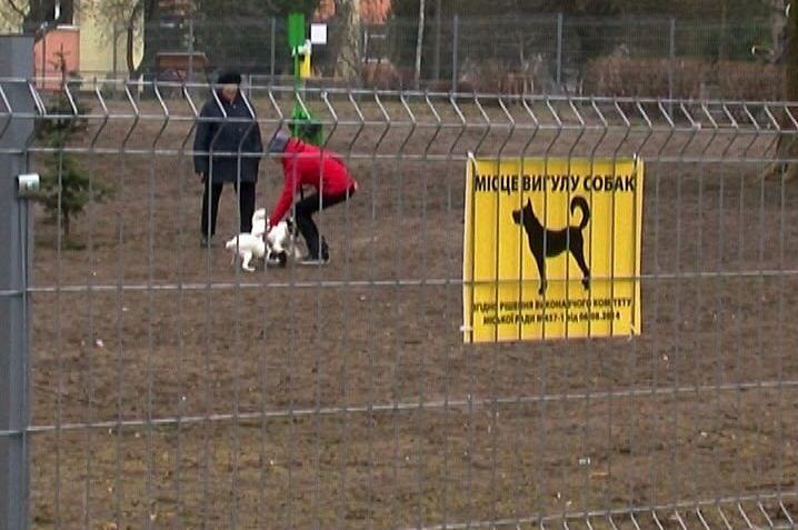 КП «Ласка» отримає оснащення майданчика для вигулу собак у центрі Луцька