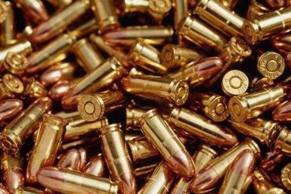 У волинянина вилучили зброю та боєприпаси