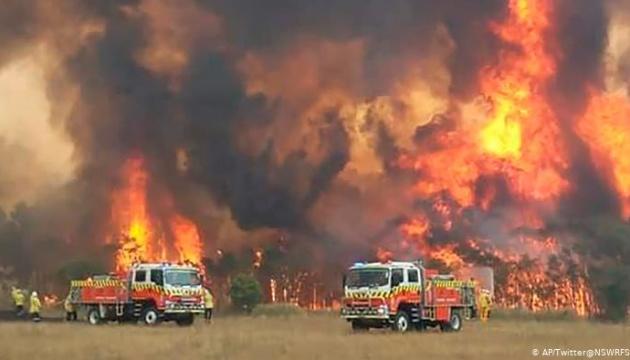 В Австралії від лісових пожеж загинули 24 особи