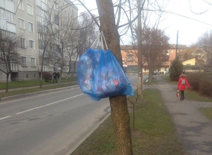 У місті на Волині невідомі повісили мішок зі сміттям на дерево. ФОТО