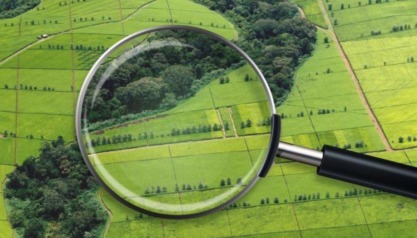 На Волині опрацювали майже сто тисяч звернень з питань ведення Державного земельного кадастру