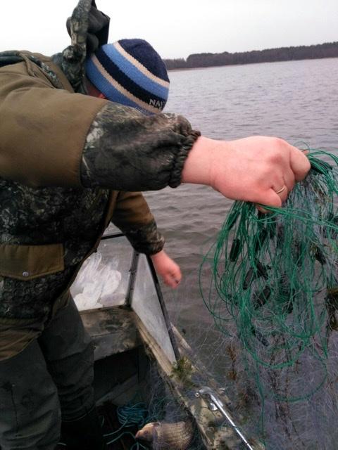 На Волині протягом тижня викрили 29 порушень правил рибальства