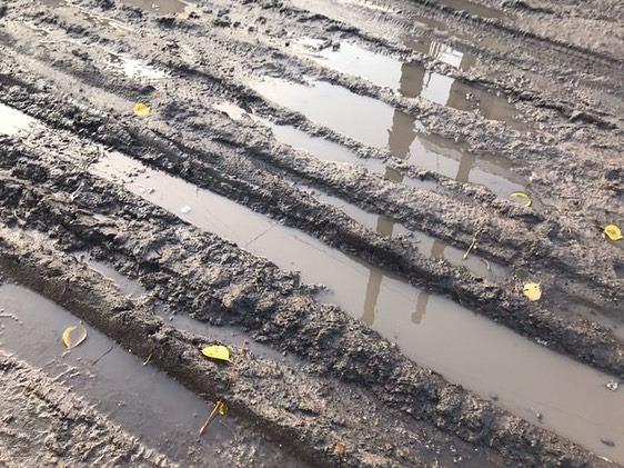 «Міська влада нічого не робить»: на Волині вулиця до школи потопає у багнюці. ФОТО