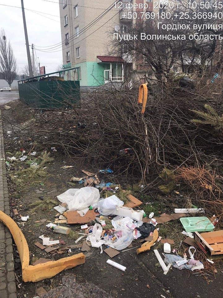 Гілля, сміття та будівельні матеріали: у Луцьку муніципали виявили порушення правил благоустрою міста