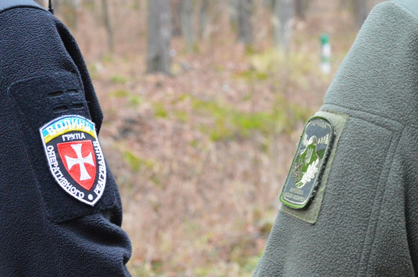 На Волині створили групи, які перешкоджатимуть незаконній порубці деревини