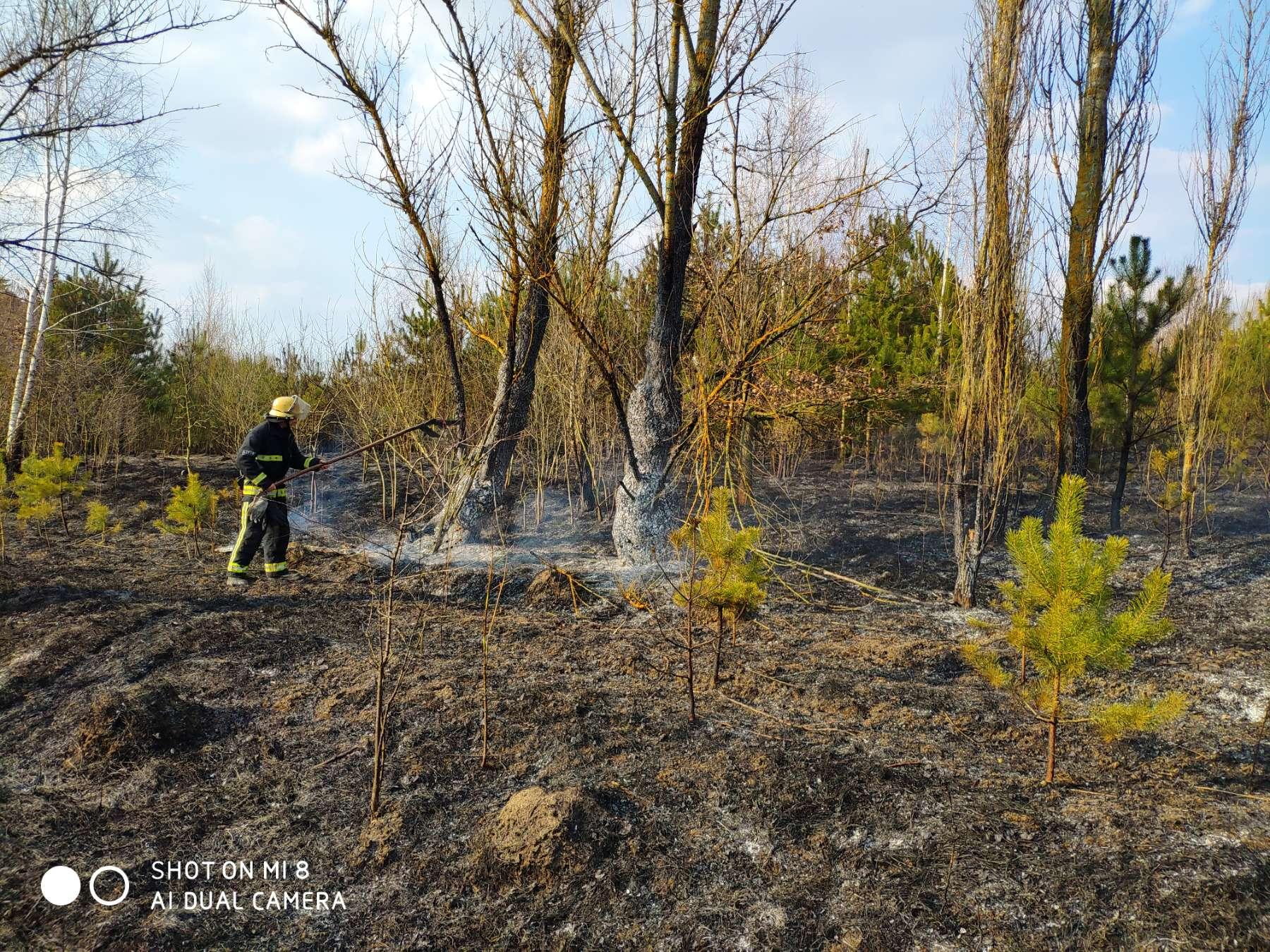 На Волині протягом тижня ліквідували майже сотню пожеж в екосистемах