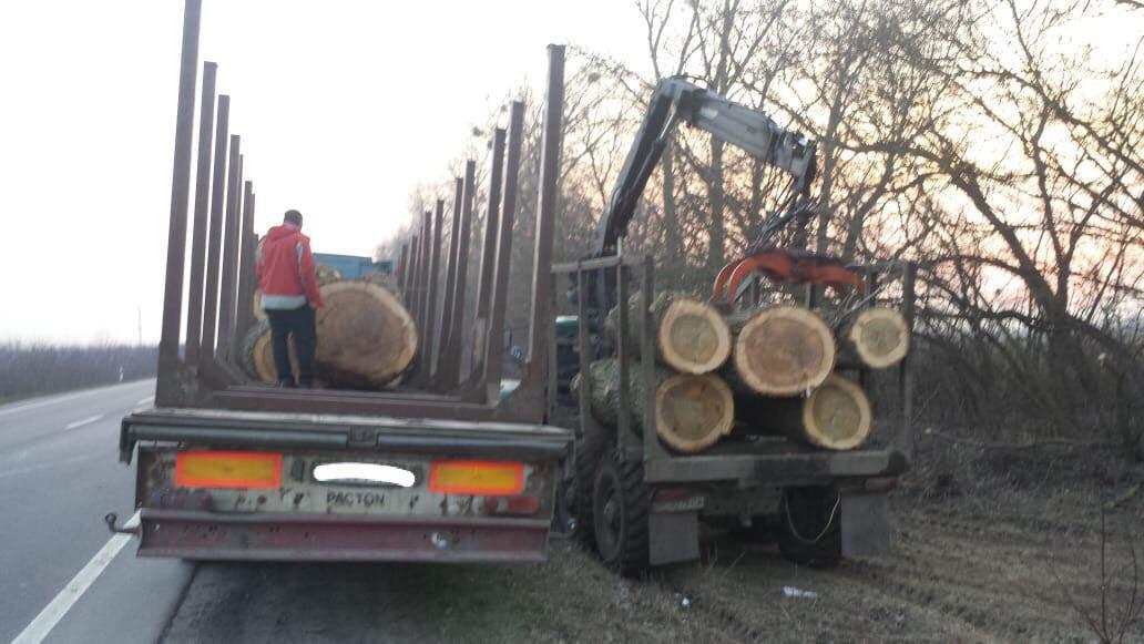 На Волині правоохоронці зупинили вантажівку з незаконною деревиною