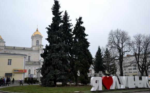 У Луцьку відповіли на петицію щодо збереження ялинок на Театральному майдані