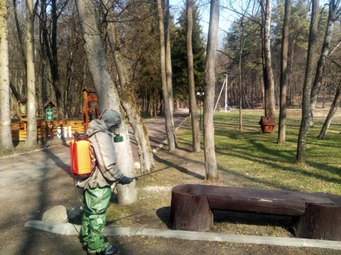 У лісі поблизу Луцька продезінфікували місця відпочинку
