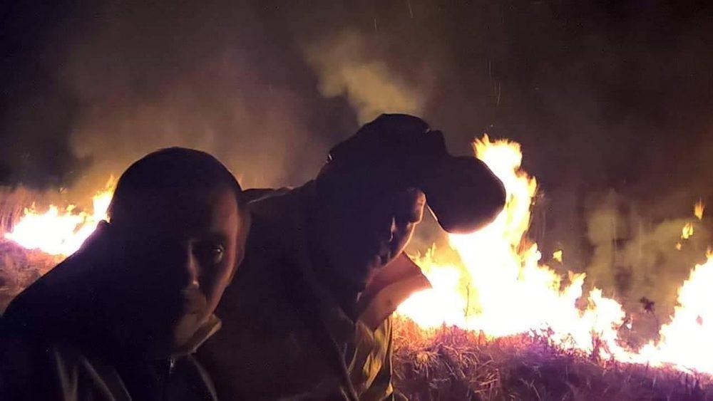 Поблизу Луцька врятували з вогню зайченят