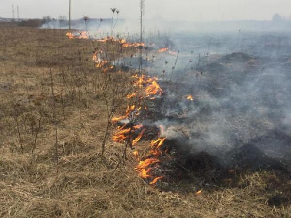 Волинянин загинув внаслідок спалювання сухої трави