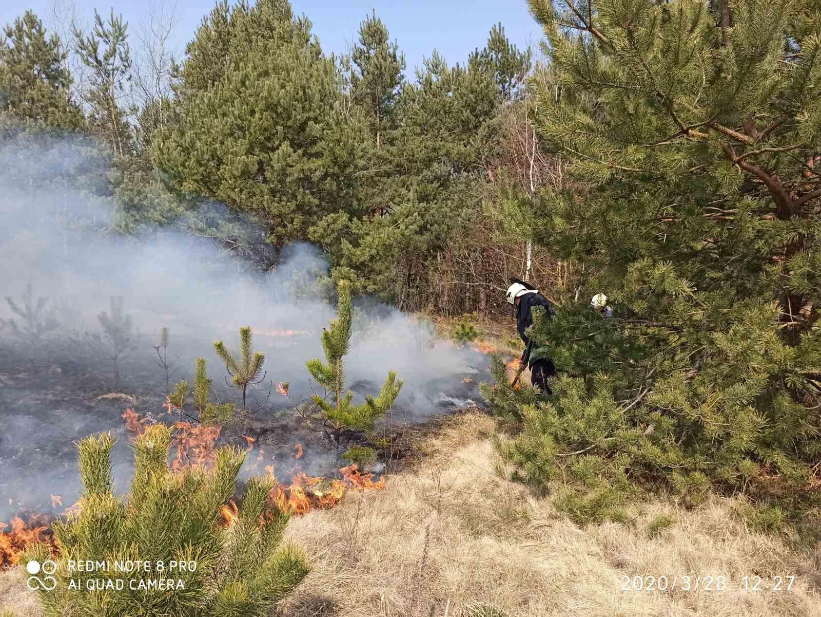 На Волині за добу ліквідували 20 пожеж в екосистемах