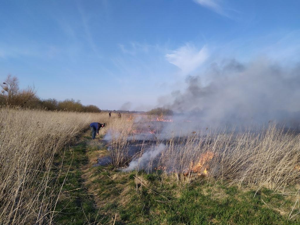 На Волині протягом доби ліквідували 14 пожеж сухої трави