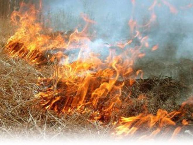 Волинян закликають не спалювати суху траву