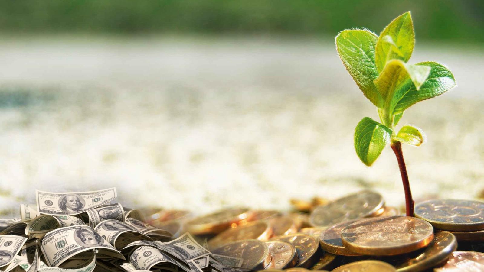 Волиняни сплатили понад п'ять мільйонів гривень екологічного податку
