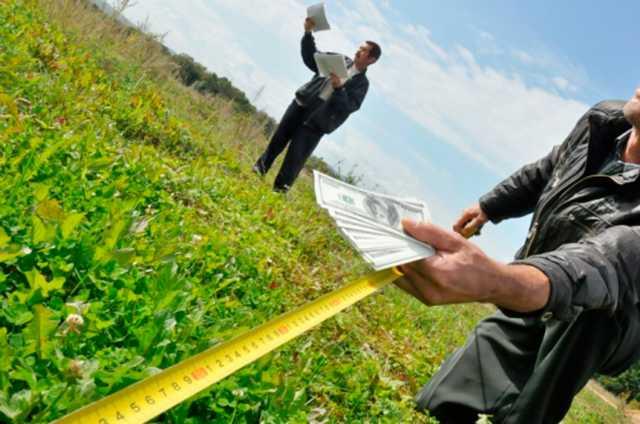 Як волинянам приватизувати земельну ділянку