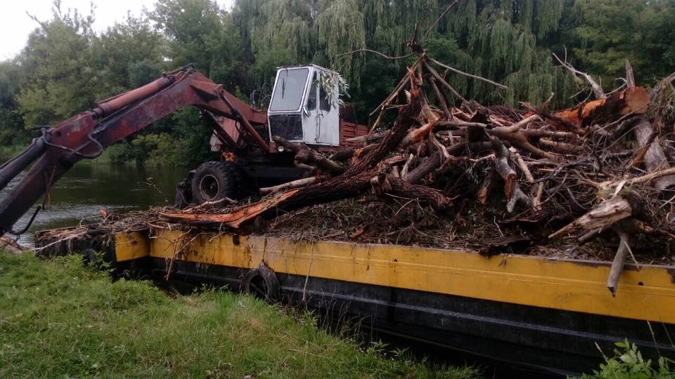 Скільки коштуватиме видалення дерев у прибережній смузі Стиру у Луцьку