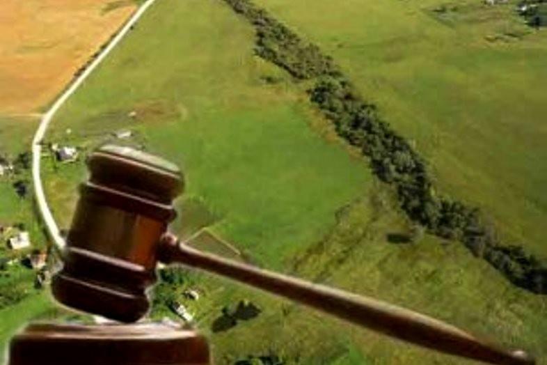 На Волині сільрада може повернути через суд ділянку вартістю 23 мільйони