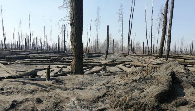 Шмигаль заявляє, що під Чорнобилем приборкали вогонь
