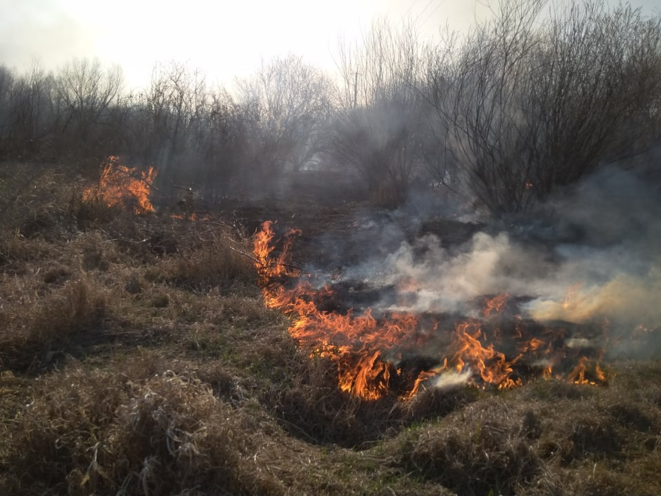 На Волині протягом тижня ліквідували понад сотню пожеж