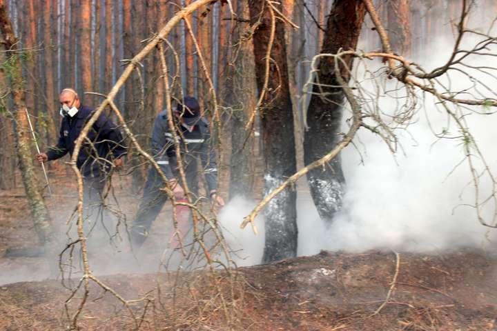 У зоні відчуження тривають пожежі на території шести лісництв