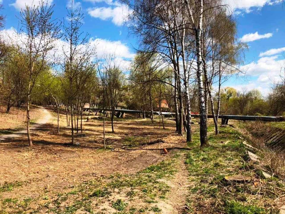 У Луцьку планують здійснити капітальне оновлення парку на ЛПЗ
