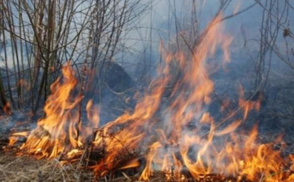 На Волині виникло п'ять пожеж сухої трави через необережне поводження з вогнем