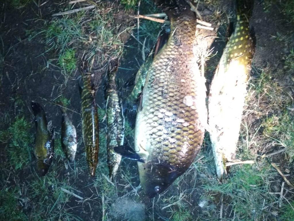 На Волині під час рейду виявили порушників правил рибальства