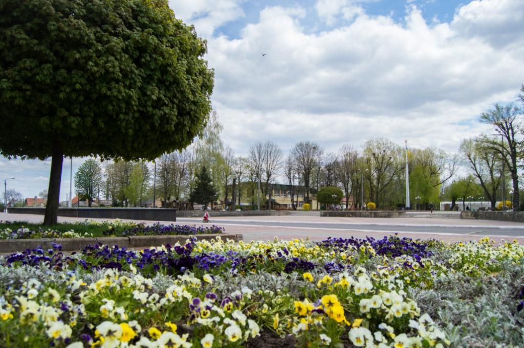 Карантинний Нововолинськ прикрашають квітковими композиціями