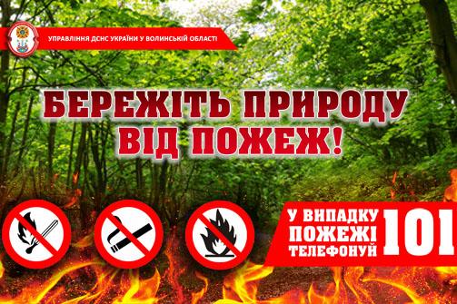 Сотні пожеж та зумисні підпали: волинян закликають не випалювати траву