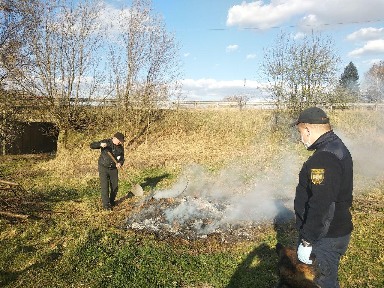 Поблизу Луцька рятувальники виявили палія трави