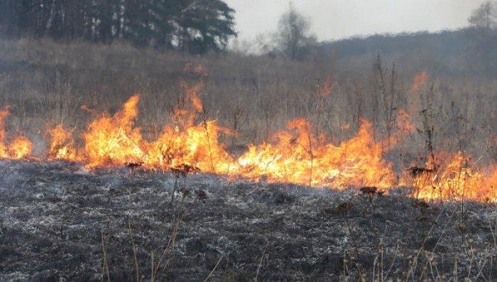 На Волині розслідують факти підпалу трави
