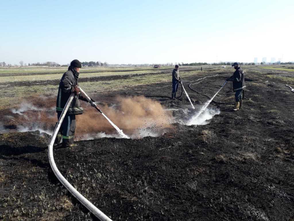 На Волині ліквідували пожежі на площі майже 45 гектарів