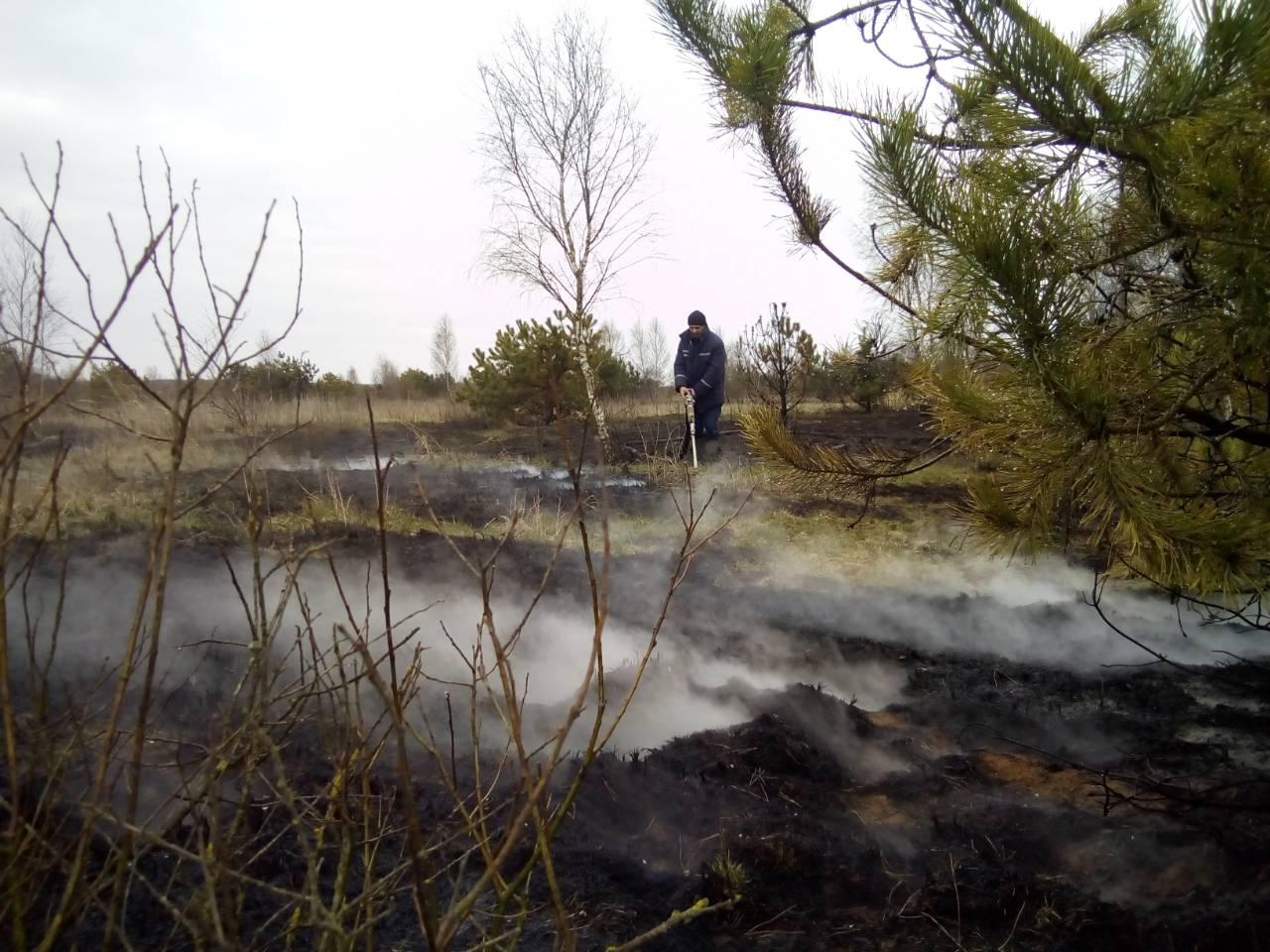 На Волині ліквідували пожежу торфовища