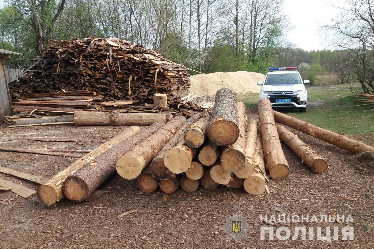 На Волині виявили понад сотню колод деревини без відповідних документів