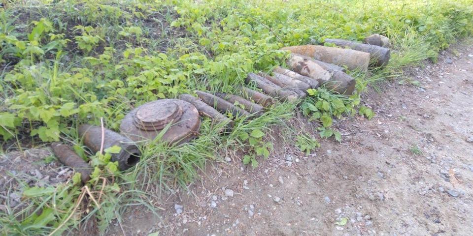 У лісі на Волині виявили боєприпаси часів Другої світової війни