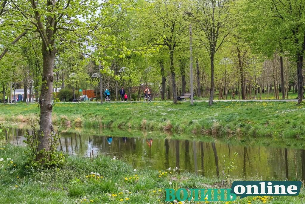 На знищення комах у центральному парку Луцька витратять майже 50 тисяч