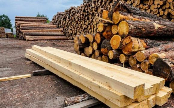 На Волині змінили склад міжвідомчої групи щодо ліквідації нелегального обігу деревини