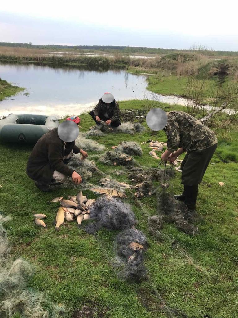 Браконьєри на одній з волинських водойм завдали збитків на понад 13 тисяч