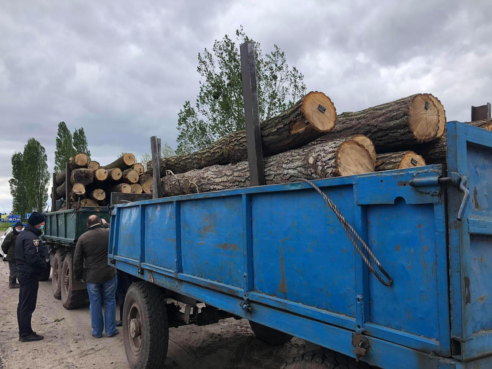 У Ковелі й на Ратнівщині вилучили незаконну лісопродукцію. ФОТО