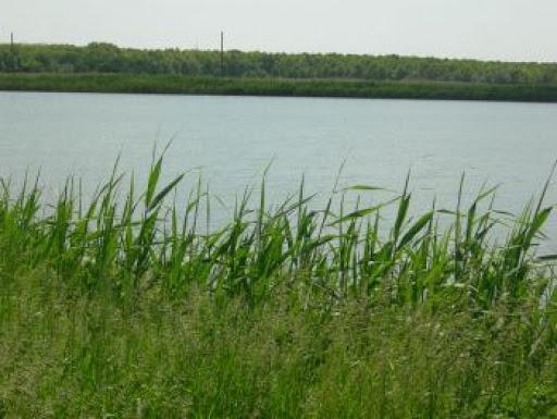 На Волині повернули державі ділянку водного фонду вартістю понад 16,5 мільйона