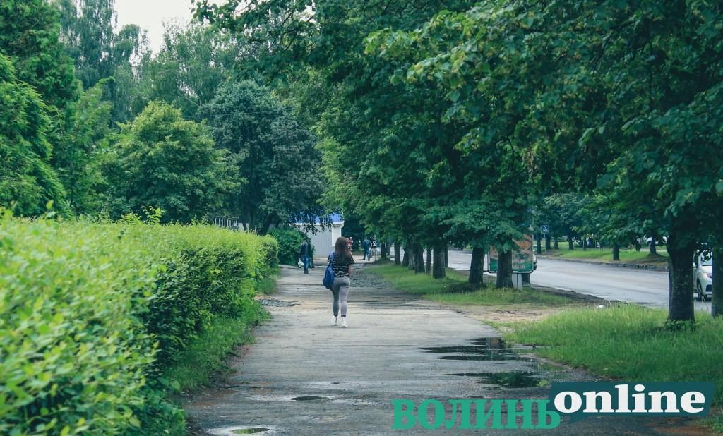 Коли у Луцьку ремонтуватимуть тротуари на проспекті Молоді