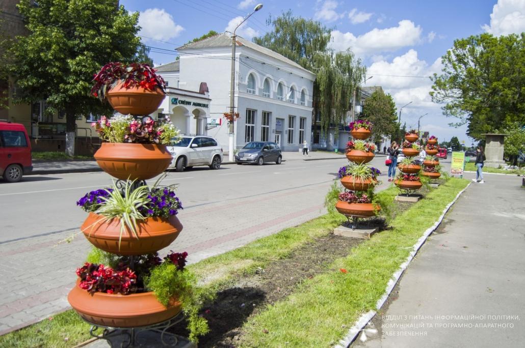 Центр Нововолинська прикрасили квітковими композиціями