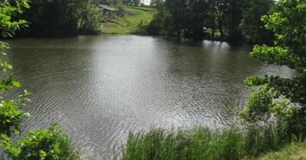 Орендарів трьох ділянок з водоймами на Волині визначатимуть через аукціон