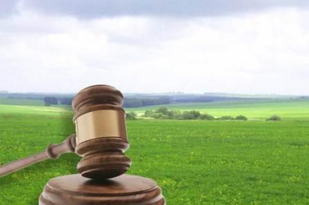 На Волині через суд повернули державі ділянку вартістю 10 мільйонів гривень