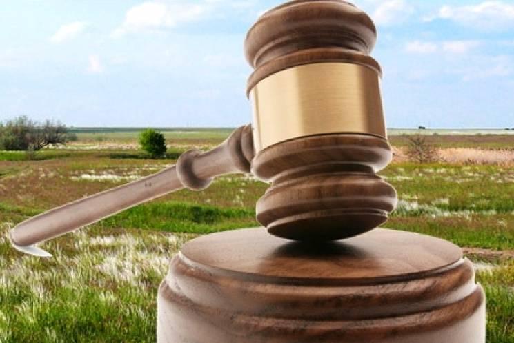 На Волині державі через суд повернули 26 земельних ділянок