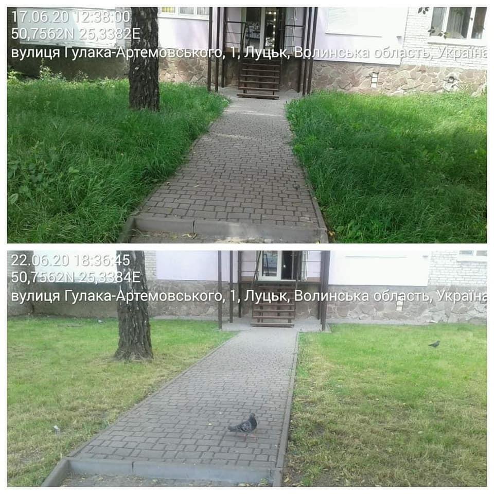 У Луцьку муніципали видали майже півтисячі приписів за нескошену траву