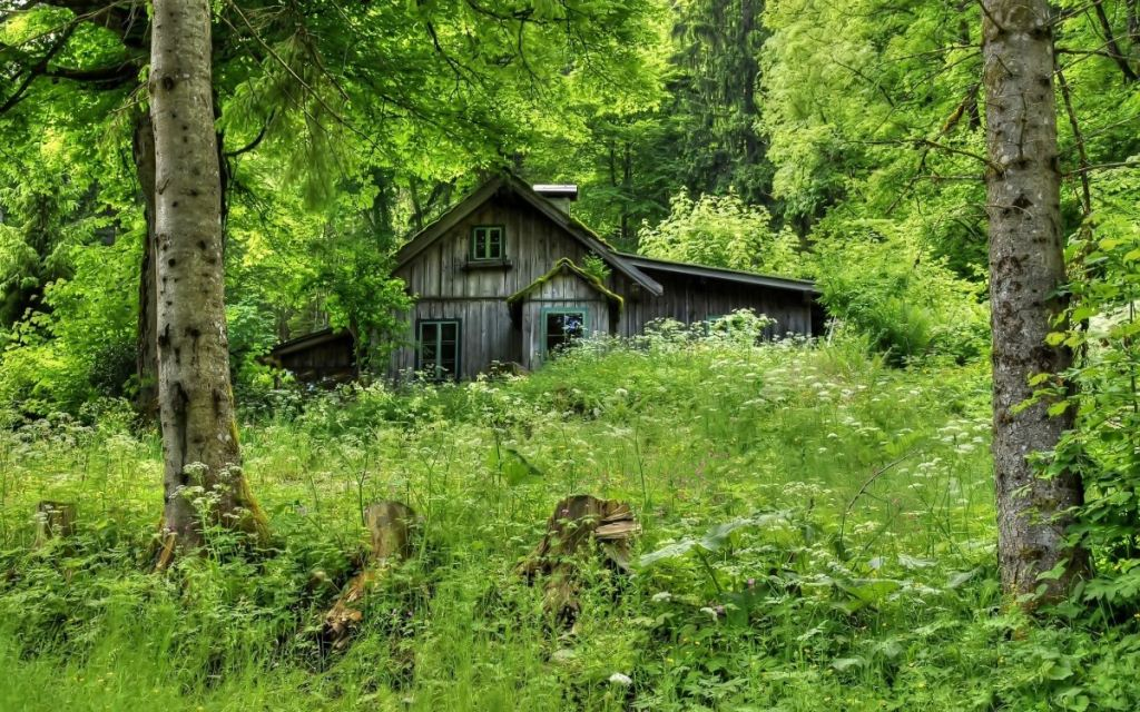 Недоліки ідеального будинку